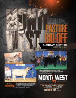 2020 Monti West Fall Ad